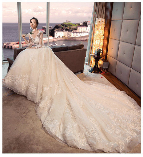 Wedding Dress Online.V Neck Long Sleeves Lace Wedding Dress With Long Train On Sale